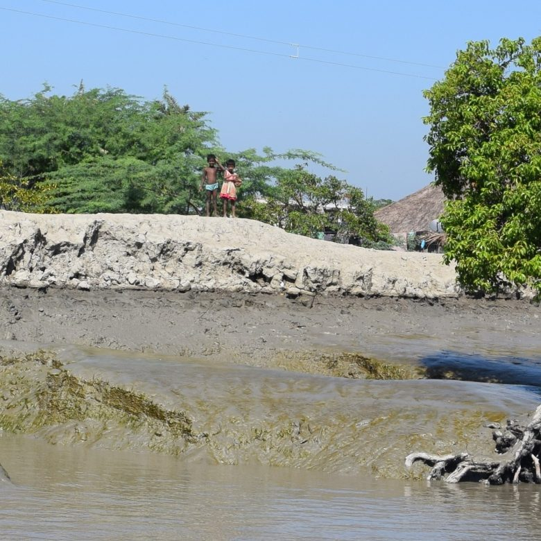 Rupamari fishing ponds